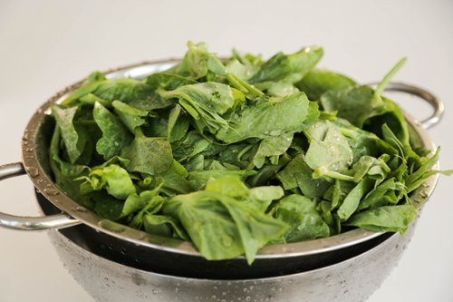 stir-fried snow pea tips